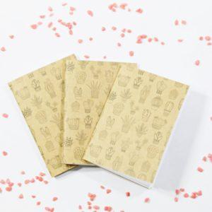 Sada 3 mini zápisníkov KAKTUSY Vhodné na menšie zápisky či poznámky. Svojou veľkosťou sa zmestia do kabelky alebo len tak do vrecka nohavíc.