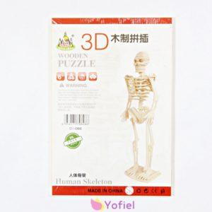 Drevená 3D skladačka - kostra človeka