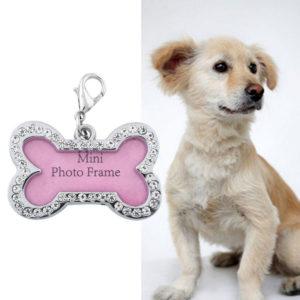 Prívesok na obojok pre psa s kamienkami v tvare kostičky. Do prívesku možno vložiť meno psíka alebo fotku. Použiť ho možno aj ako prívesok na kľúče či tašku .