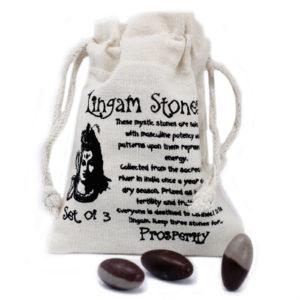 Shiva Lingam ochranné kamene Shiva - hinduistický Boh premeny, transformácie. Lingam - znamená falus a vzťahuje sa na vajcovitú formu kameňa.